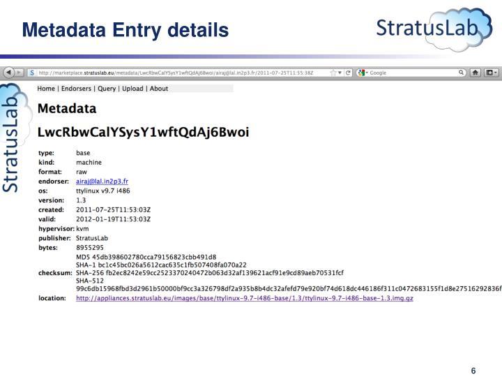 Metadata Entry details