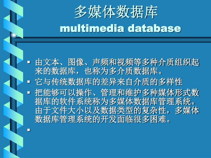 多媒体数据库