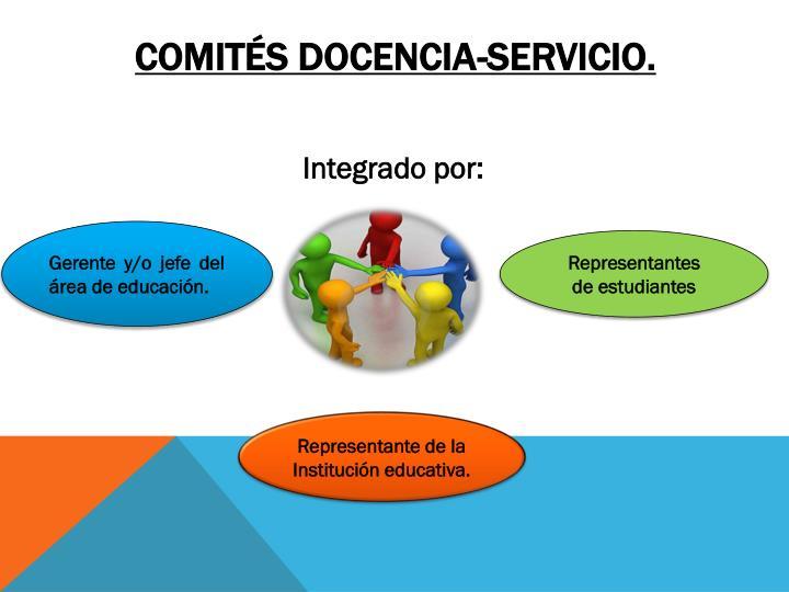 COMITÉS DOCENCIA-SERVICIO.