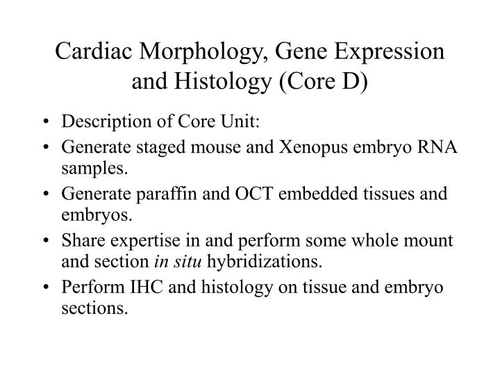 Cardiac morphology gene expression and histology core d