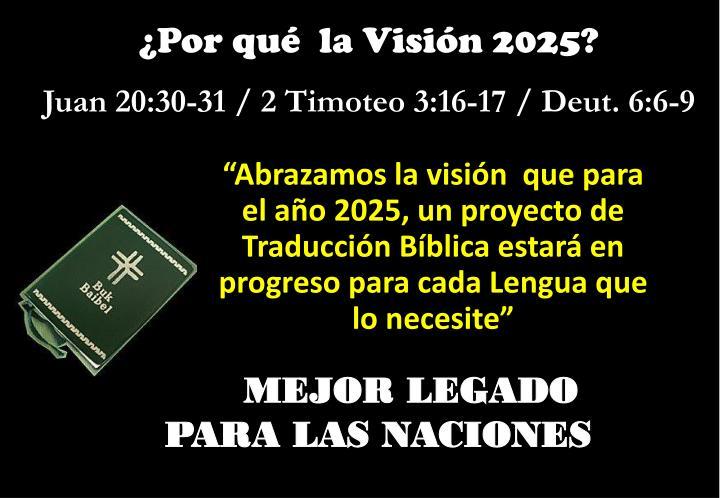 ¿Por qué  la Visión 2025?
