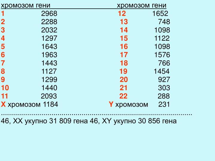 хромозом генихромозом гени