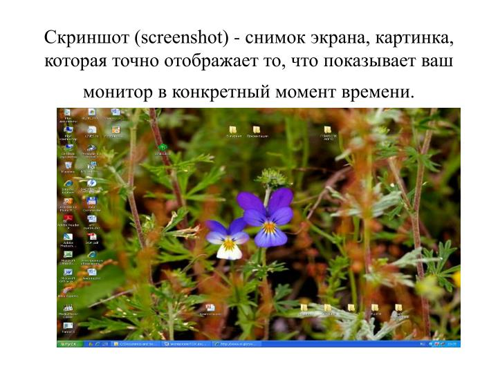 (screenshot) -  , ,    ,        .