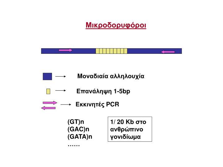 Μικροδορυφόροι