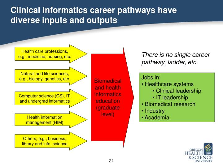 Clinical informatics career pathways have