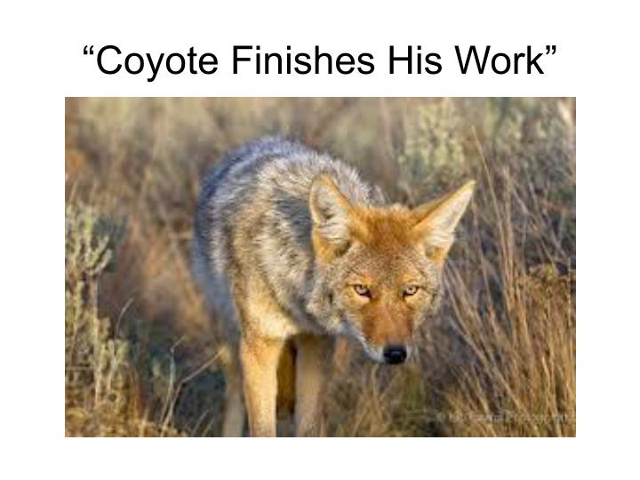 """Coyote Finishes His Work"""