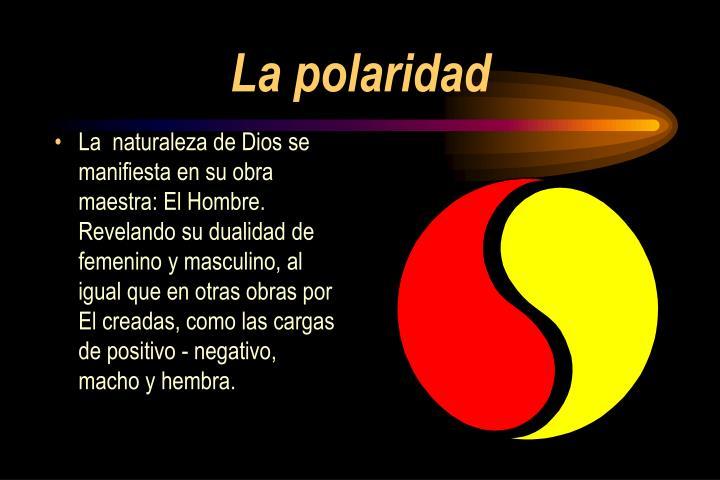 La polaridad