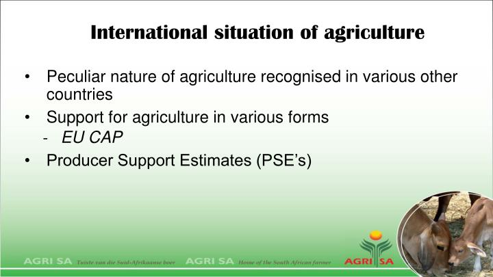International situation of agriculture