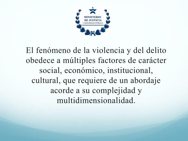 El fenómeno de la violencia y del delito obedece a múltiples factores de carácter social, económico, institucional, cultural, que requiere de un abordaje acorde a su complejidad y multidimensionalidad.