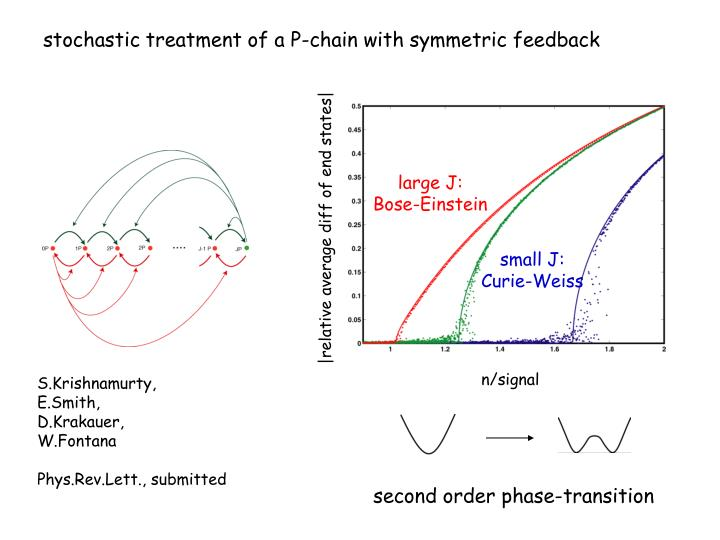 stochastic treatment of a P-chain with symmetric feedback