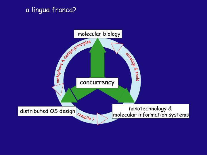 a lingua franca?