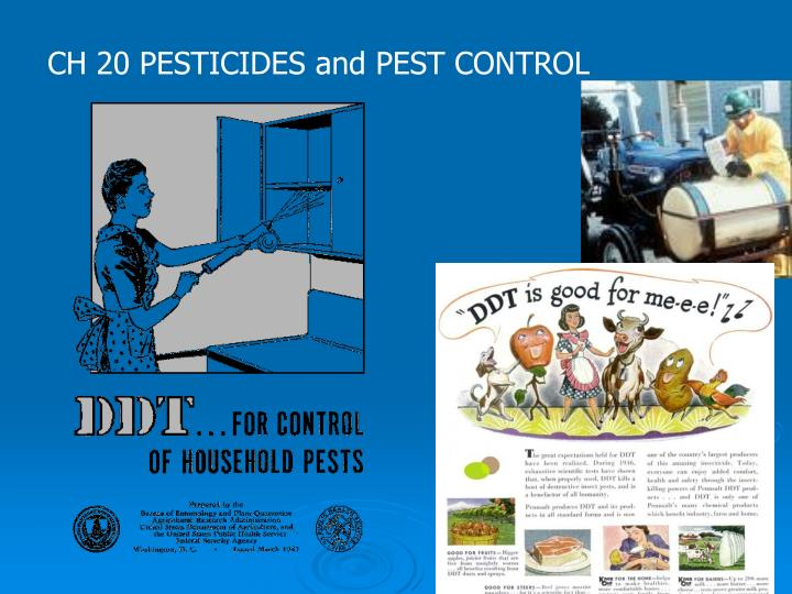 pest and pesticides Using oils as pesticides (e-419) insecticide oils are among the least expensive and under-appreciated pest management tools for home gardeners if i had room for only one pesticide spray in my workbench, it would be oil.