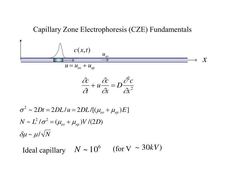 Capillary Zone Electrophoresis (CZE) Fundamentals