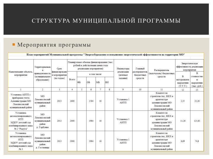 Структура муниципальной программы