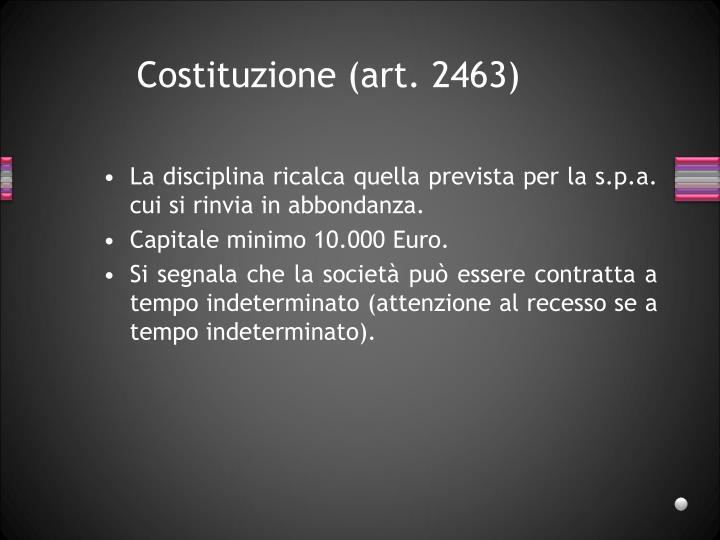 Costituzione (art. 2463)