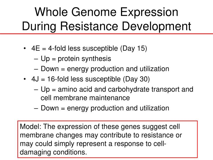 Whole Genome Expression During Resistance Development