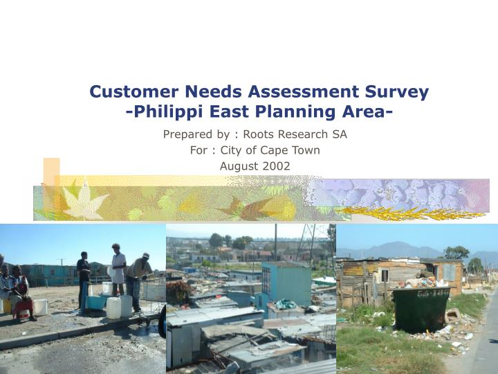 Customer needs assessment survey philippi east planning area