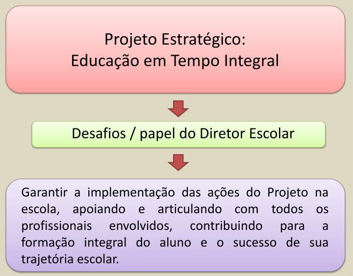 Projeto Estratégico: