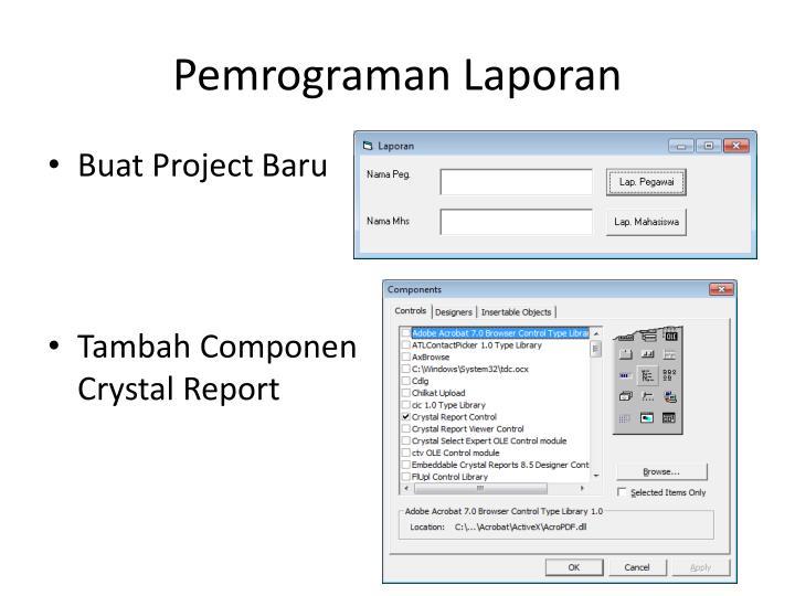 Pemrograman Laporan