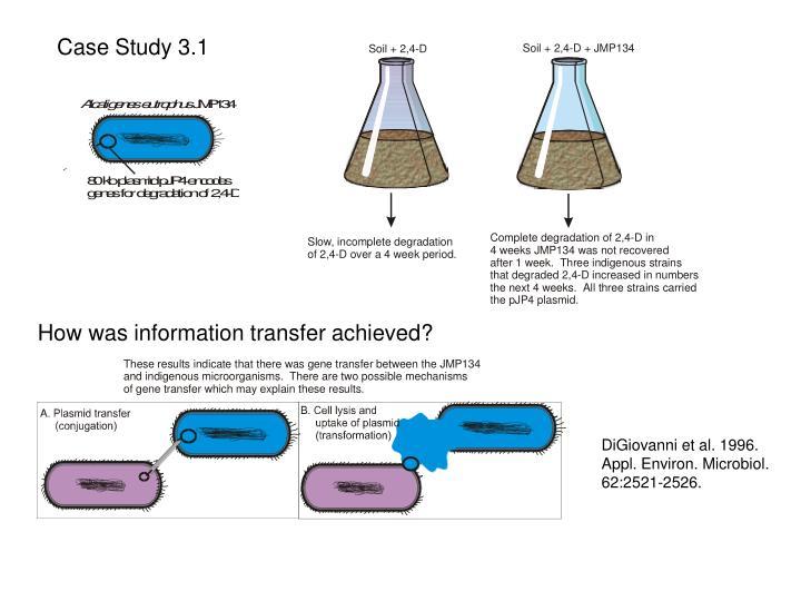 Case Study 3.1