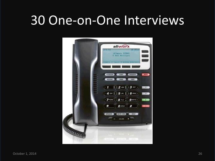 30 One-on-One Interviews