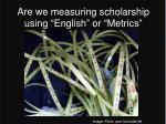 are we measuring scholarship using english or metrics