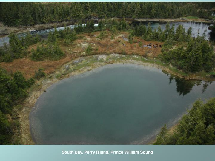 South Bay, Perry Island, Prince William Sound
