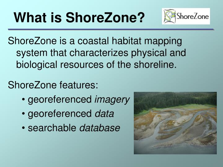What is ShoreZone?