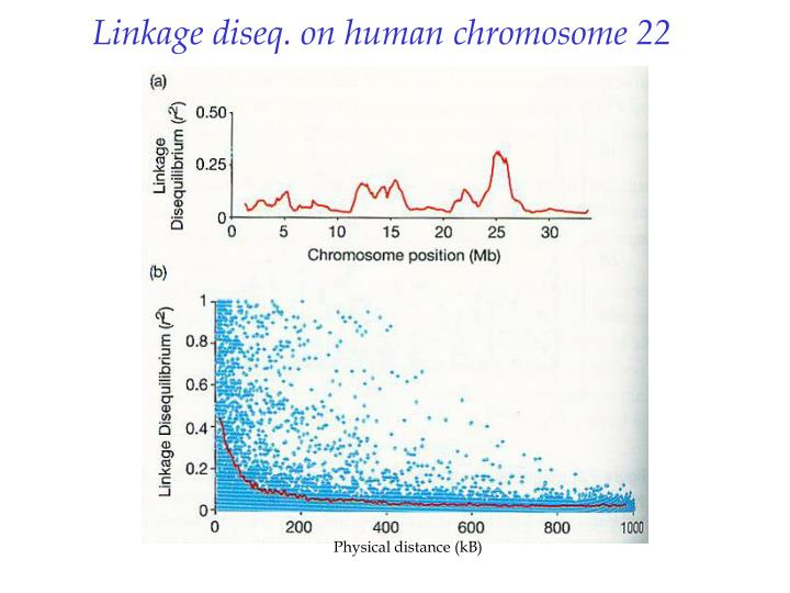 Linkage diseq. on human chromosome 22