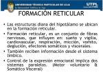 formaci n reticular