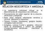 relaci n neocorteza y amigdala