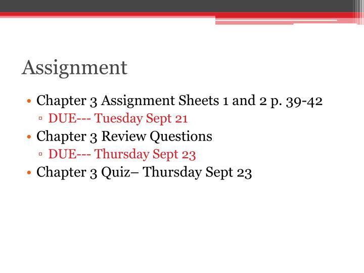 Assignment