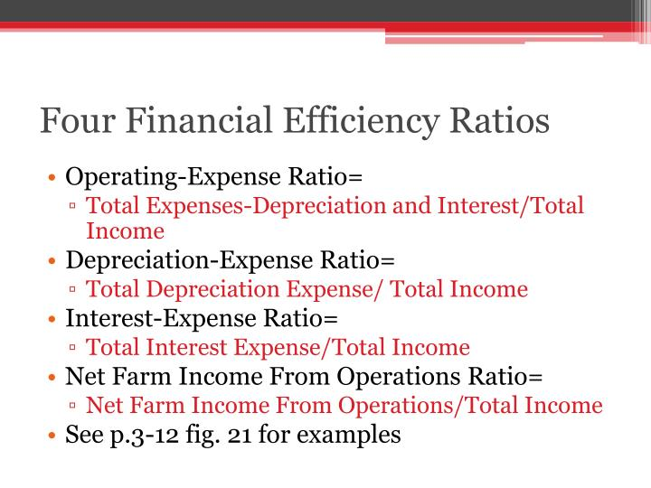 Four Financial Efficiency Ratios