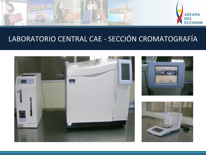 LABORATORIO CENTRAL CAE - SECCIÓN CROMATOGRAFÍA