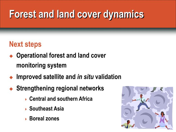 Forest and land cover dynamics