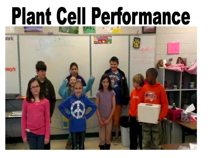 Plant Cell Performance