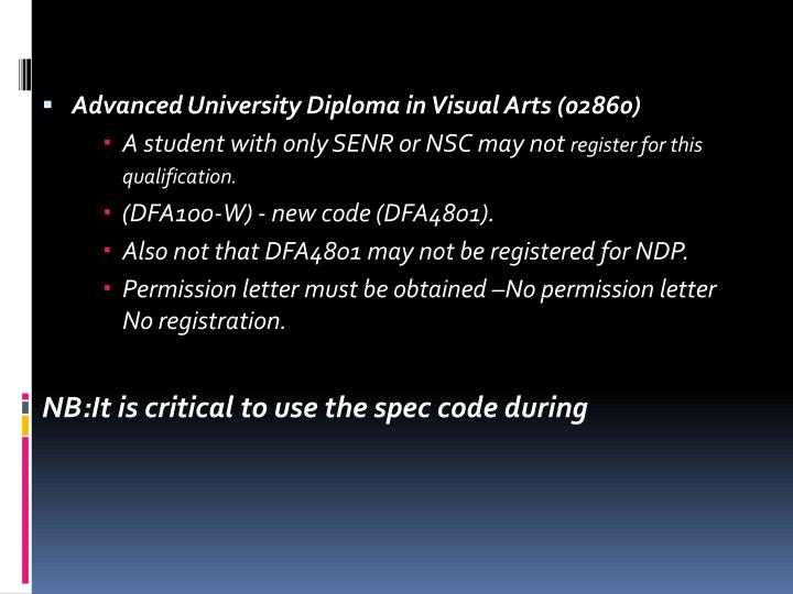 Advanced University Diploma in Visual Arts (02860)