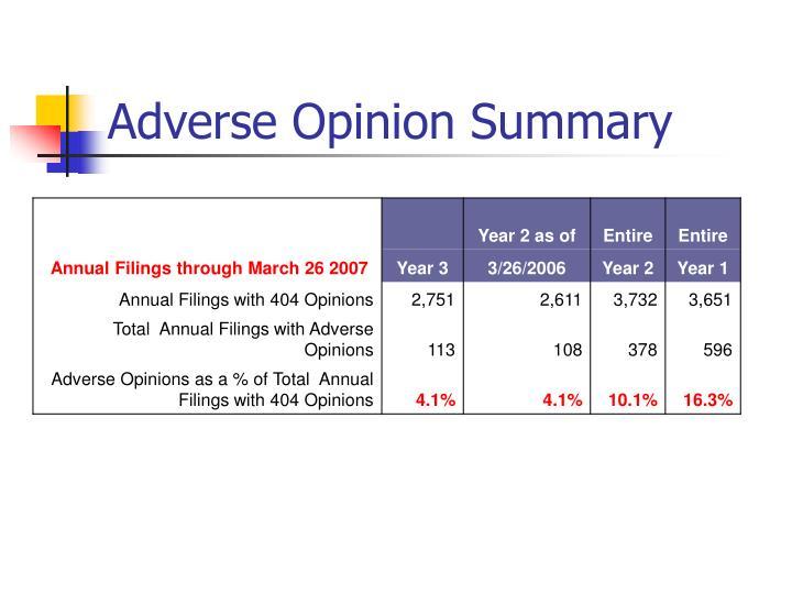 Adverse Opinion Summary