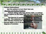 eversion at the tarsal joints