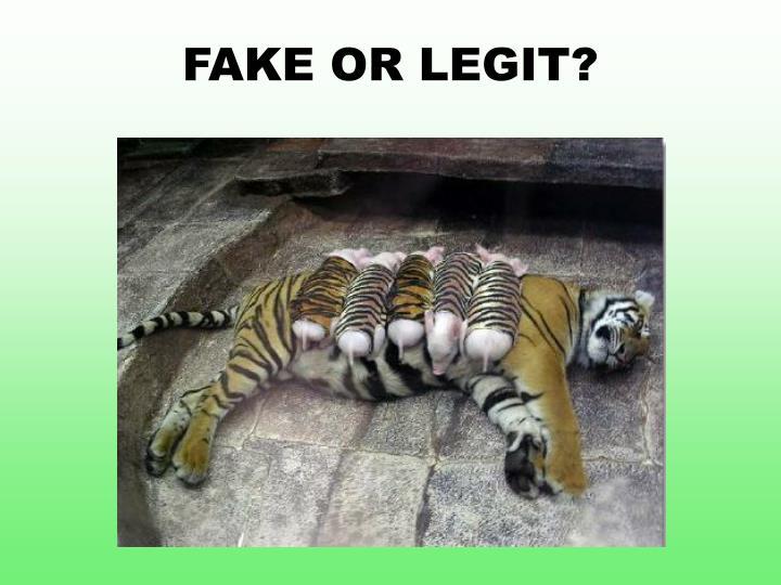 FAKE OR LEGIT?