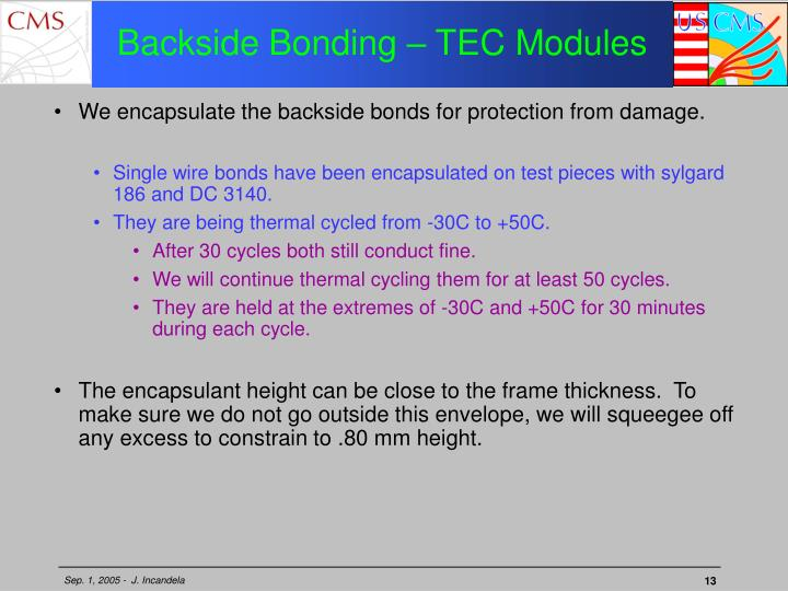 Backside Bonding – TEC Modules