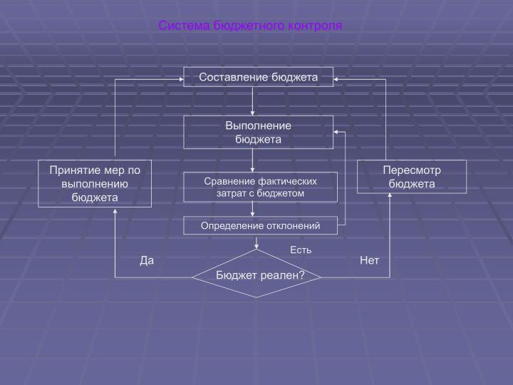 Система бюджетного контроля