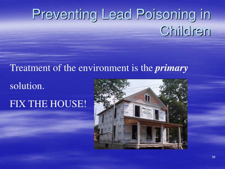 Preventing Lead Poisoning in Children