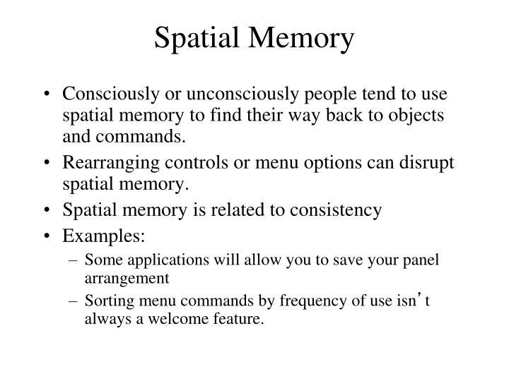 Spatial Memory