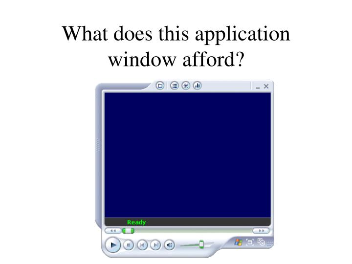 What does this application window afford?