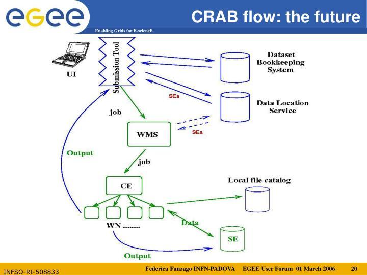 CRAB flow: the future