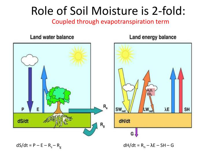 Role of Soil Moisture is 2-fold: