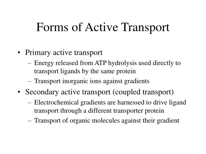 Forms of Active Transport