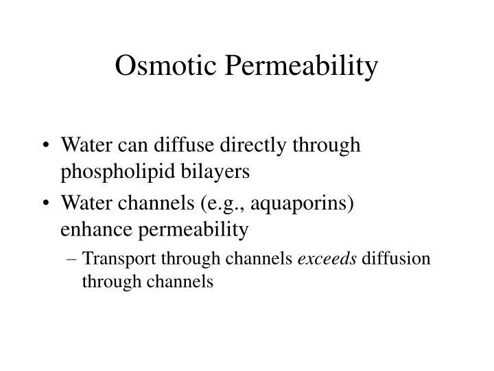 Osmotic Permeability