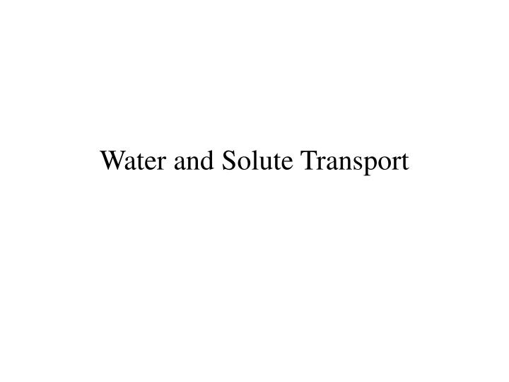 water and solute transport